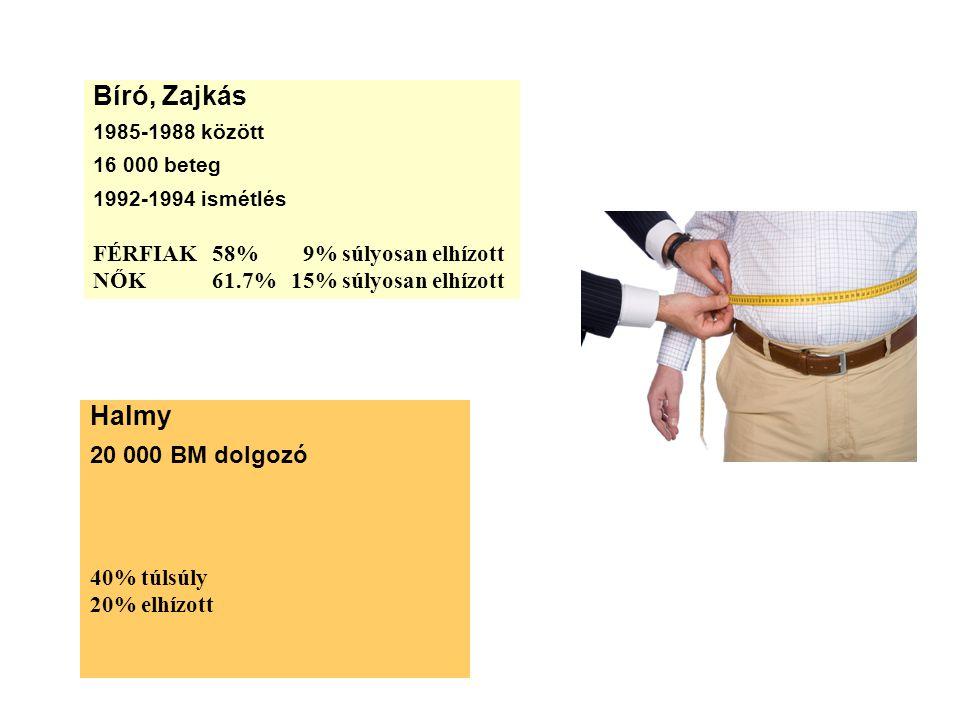 Bíró, Zajkás Halmy 20 000 BM dolgozó FÉRFIAK 58% 9% súlyosan elhízott