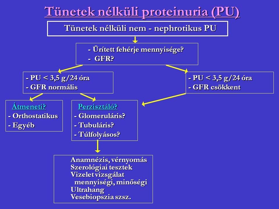 Tünetek nélküli proteinuria (PU)