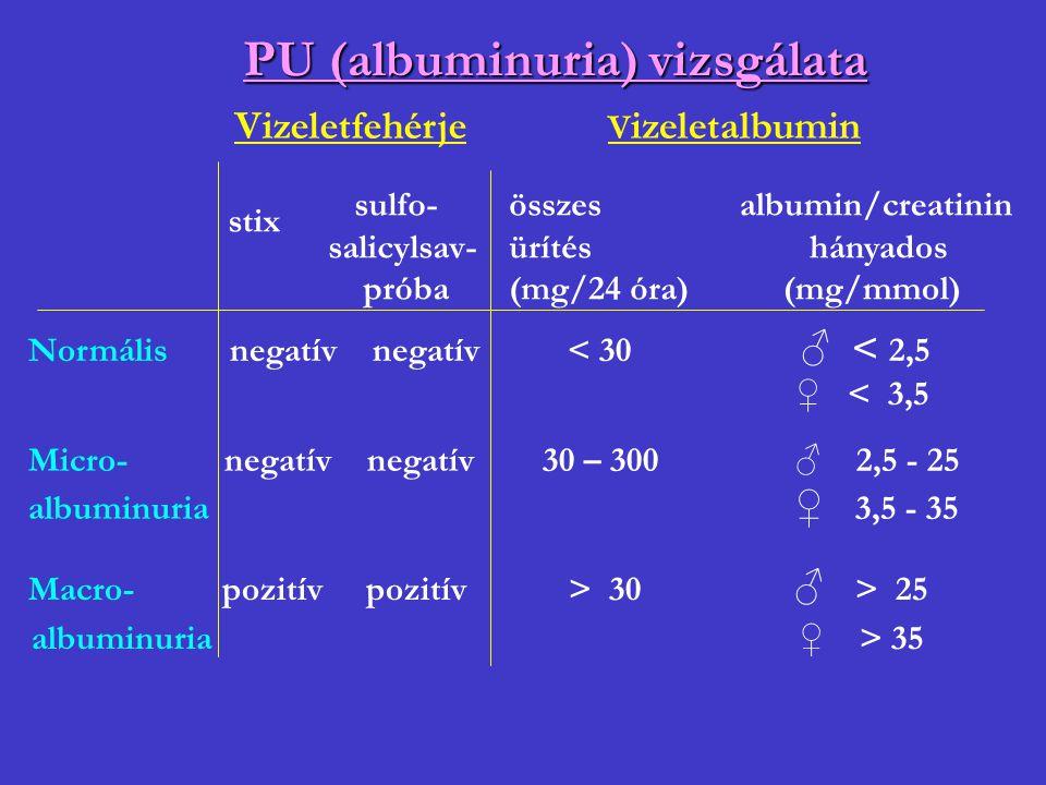 PU (albuminuria) vizsgálata
