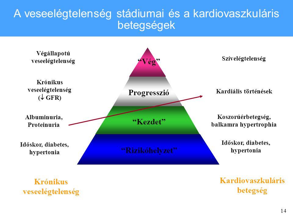 A veseelégtelenség stádiumai és a kardiovaszkuláris betegségek