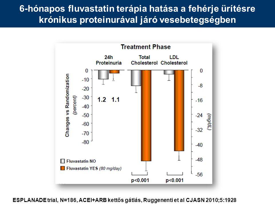 6-hónapos fluvastatin terápia hatása a fehérje ürítésre krónikus proteinurával járó vesebetegségben