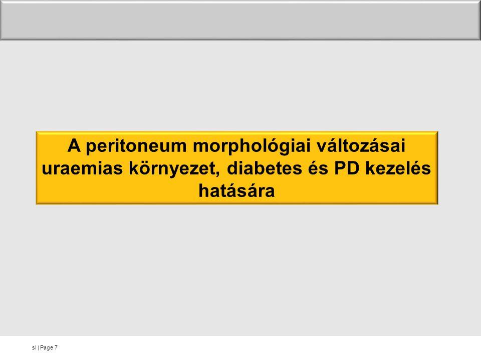 A peritoneum morphológiai változásai uraemias környezet, diabetes és PD kezelés hatására