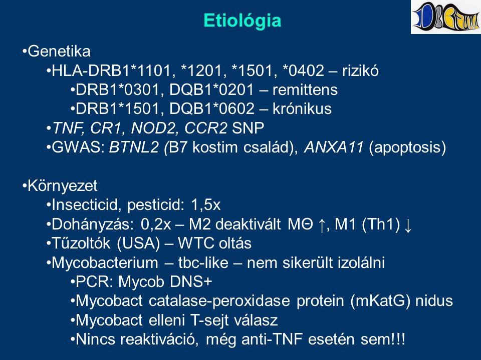 Etiológia Genetika HLA-DRB1*1101, *1201, *1501, *0402 – rizikó