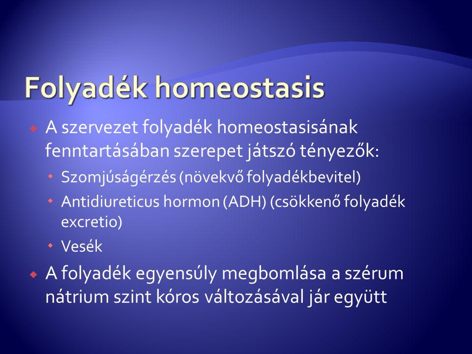 Folyadék homeostasis A szervezet folyadék homeostasisának fenntartásában szerepet játszó tényezők: Szomjúságérzés (növekvő folyadékbevitel)