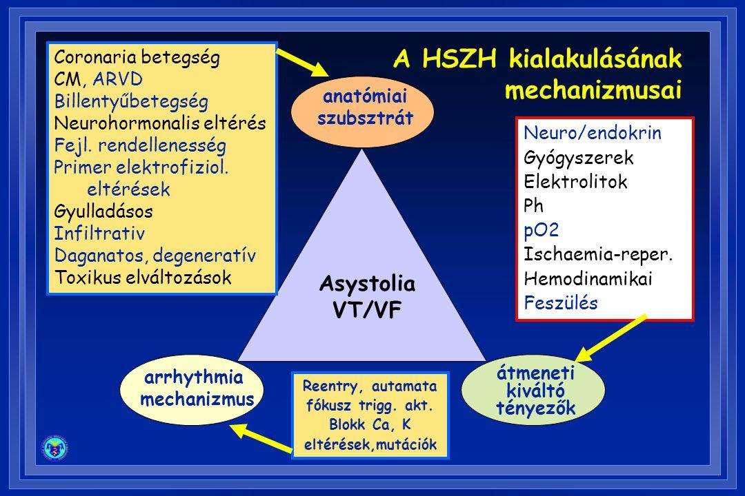 A HSZH kialakulásának mechanizmusai Asystolia VT/VF Coronaria betegség