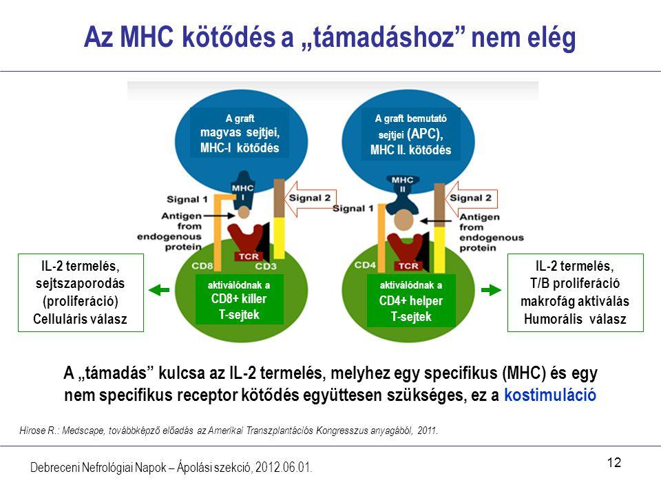 """Az MHC kötődés a """"támadáshoz nem elég"""