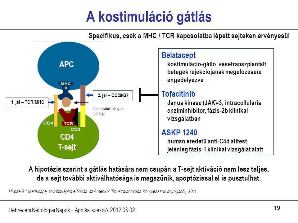 Specifikus, csak a MHC / TCR kapcsolatba lépett sejteken érvényesül