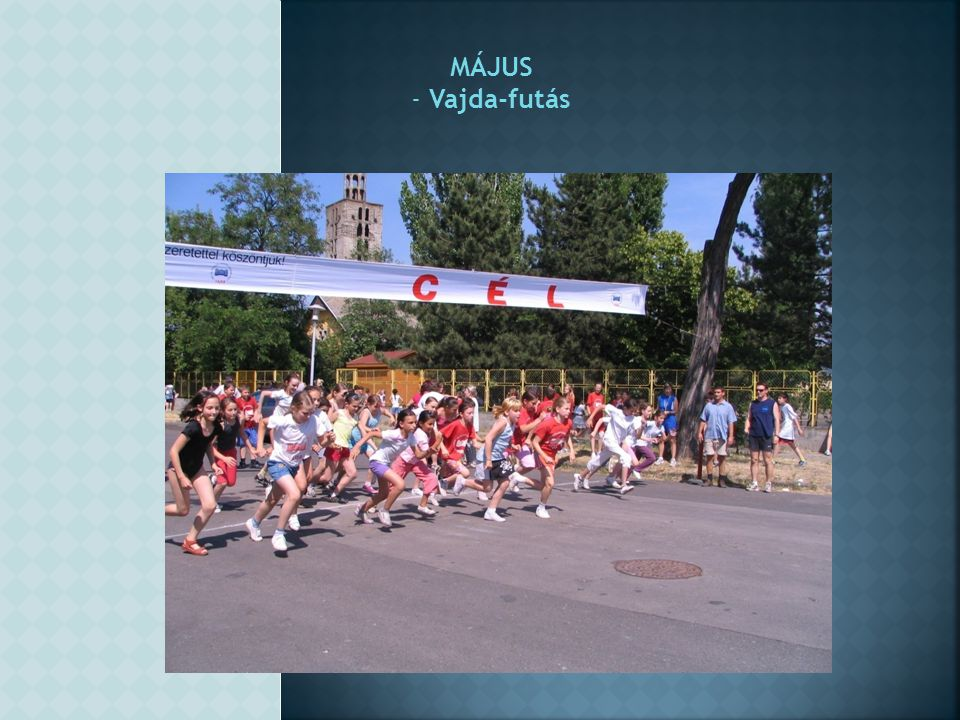 MÁJUS Vajda-futás
