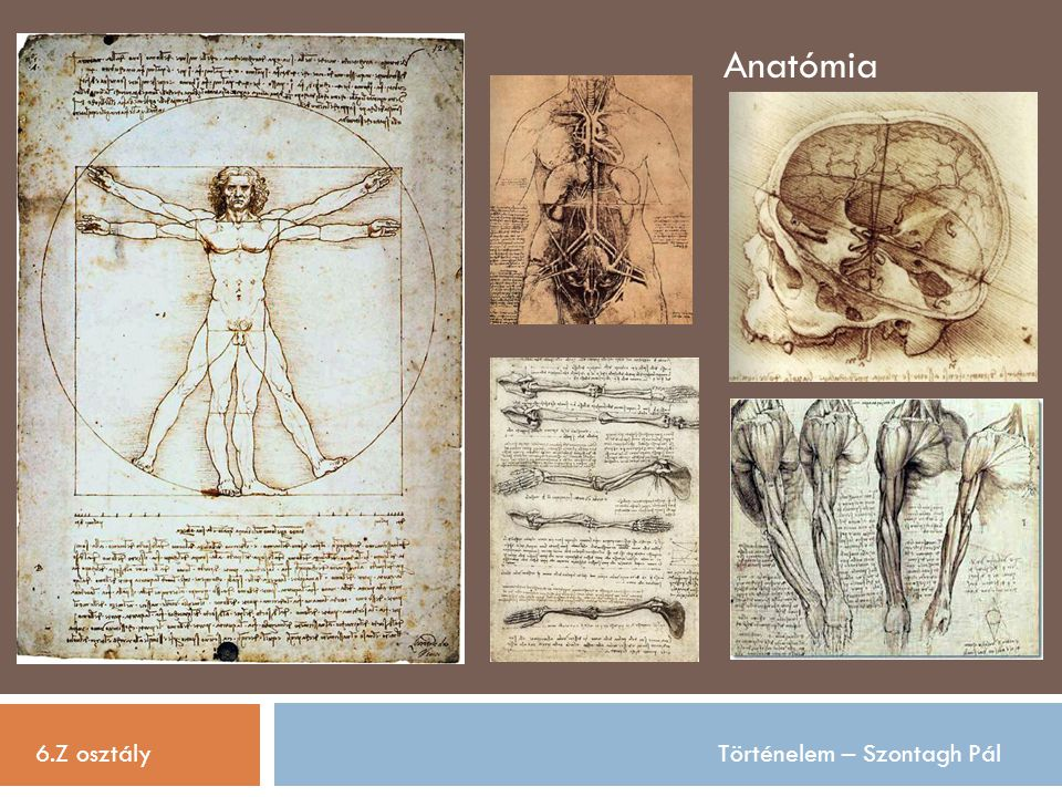 Anatómia 6.Z osztály Történelem – Szontagh Pál