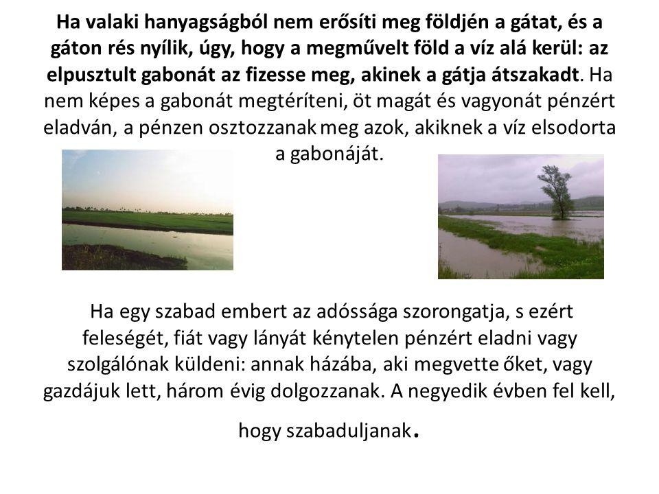 Ha valaki hanyagságból nem erősíti meg földjén a gátat, és a gáton rés nyílik, úgy, hogy a megművelt föld a víz alá kerül: az elpusztult gabonát az fizesse meg, akinek a gátja átszakadt.