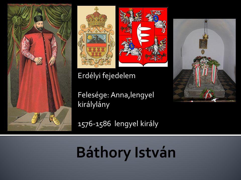 Báthory István Erdélyi fejedelem Felesége: Anna,lengyel királylány