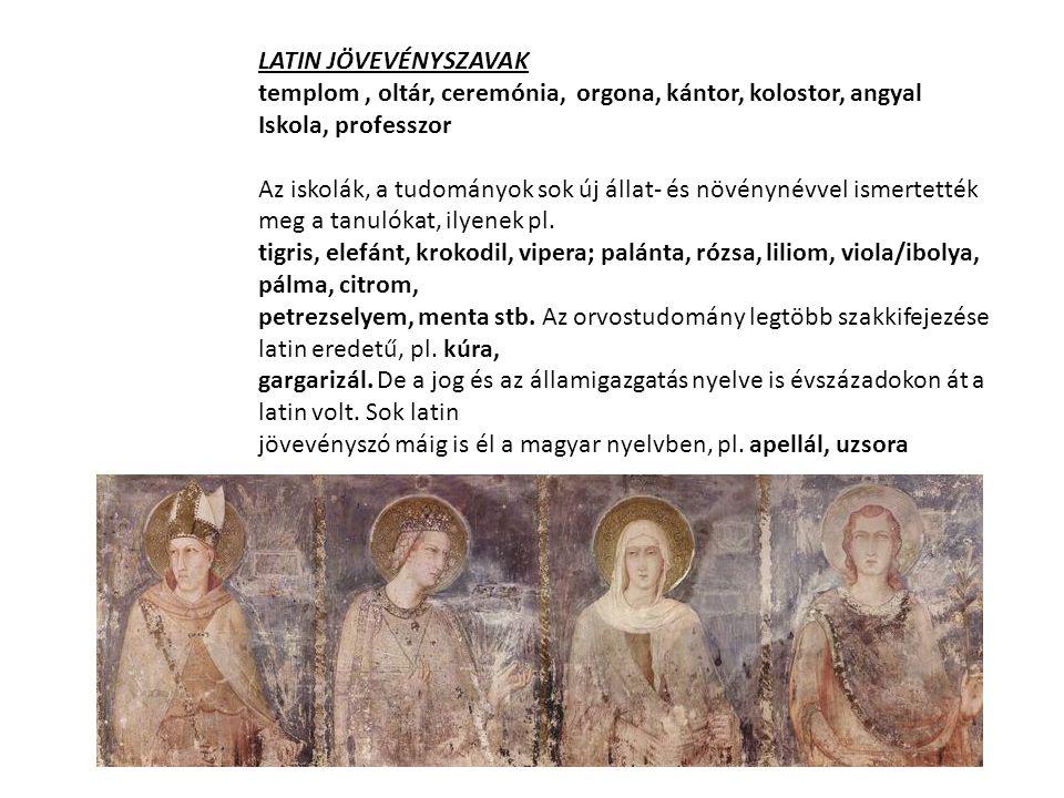 LATIN JÖVEVÉNYSZAVAK templom , oltár, ceremónia, orgona, kántor, kolostor, angyal. Iskola, professzor.