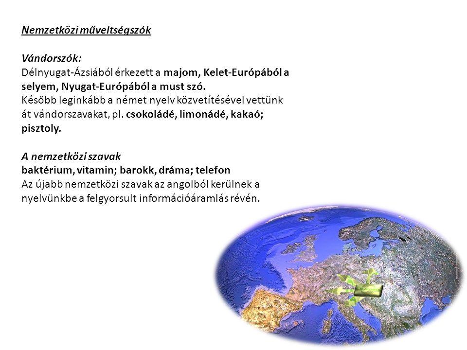 Nemzetközi műveltségszók