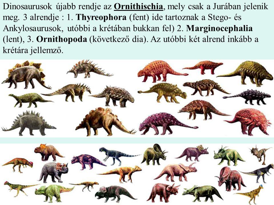 Dinosaurusok újabb rendje az Ornithischia, mely csak a Jurában jelenik meg.