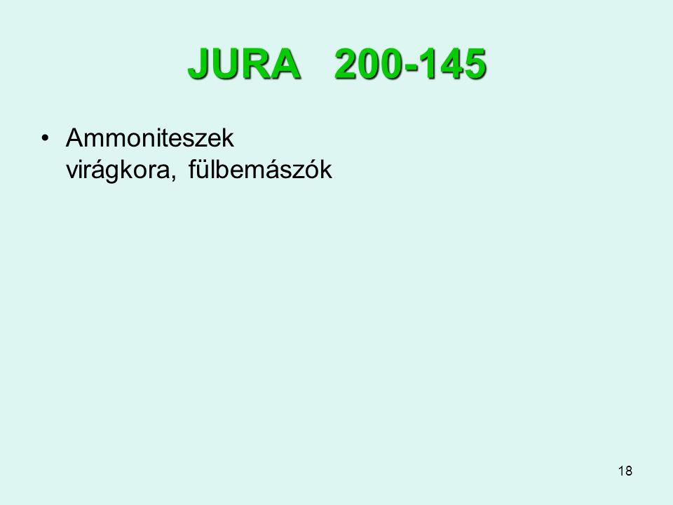 JURA 200-145 Ammoniteszek virágkora, fülbemászók