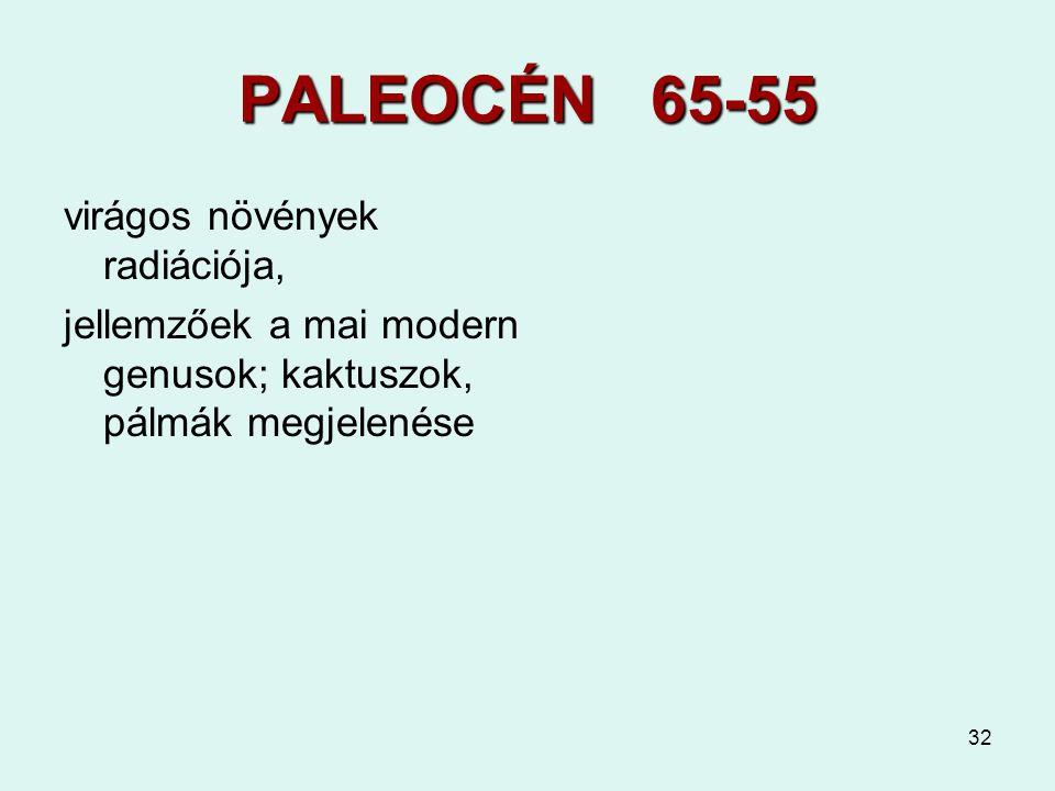 PALEOCÉN 65-55 virágos növények radiációja,