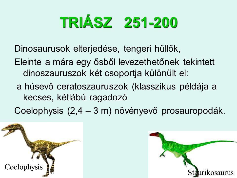 TRIÁSZ 251-200 Dinosaurusok elterjedése, tengeri hüllők,