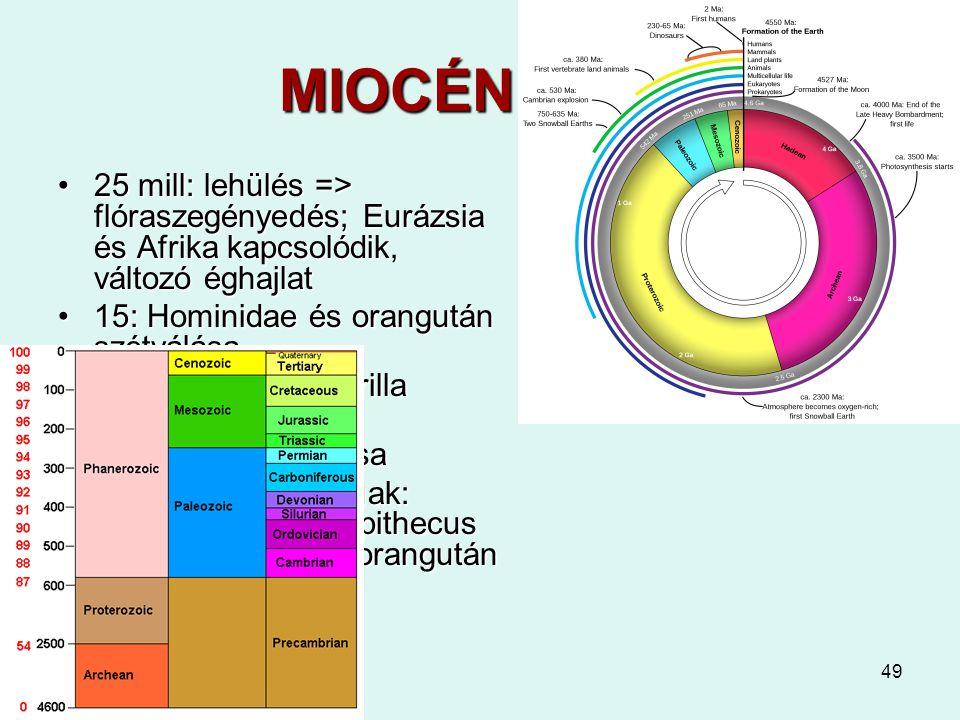 MIOCÉN 24-5 25 mill: lehülés => flóraszegényedés; Eurázsia és Afrika kapcsolódik, változó éghajlat.