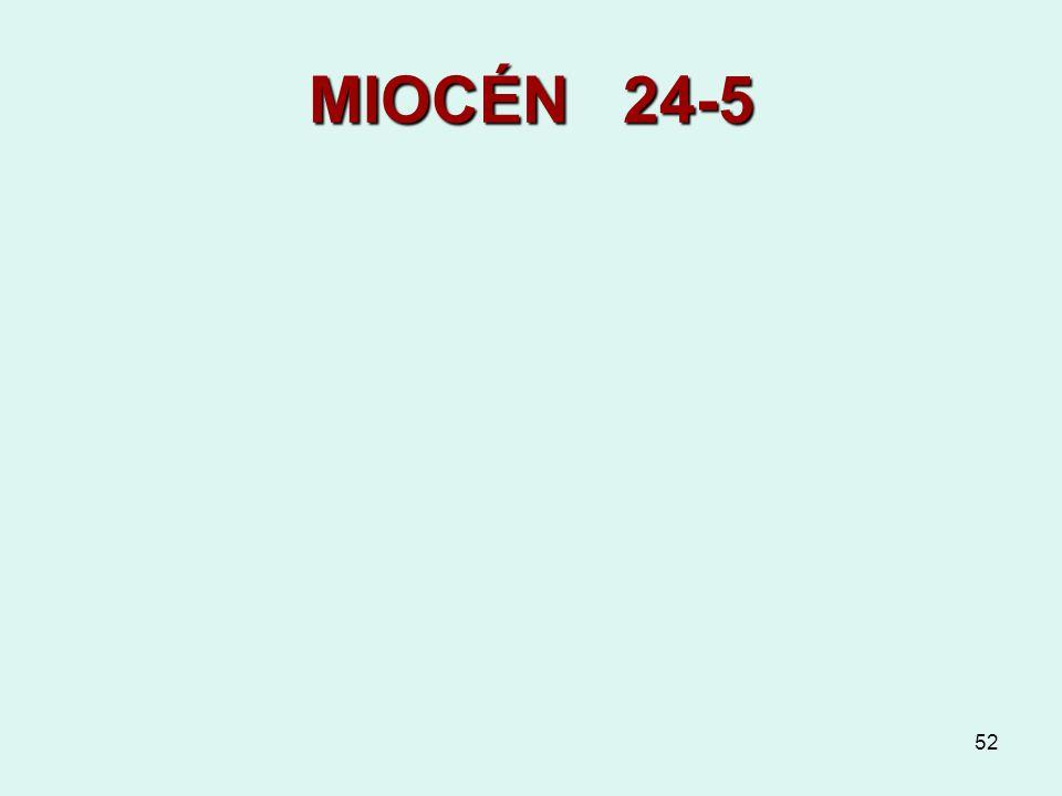 MIOCÉN 24-5