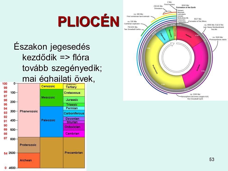 PLIOCÉN 5 - 2,6 Északon jegesedés kezdődik => flóra tovább szegényedik; mai éghajlati övek, megafauna.
