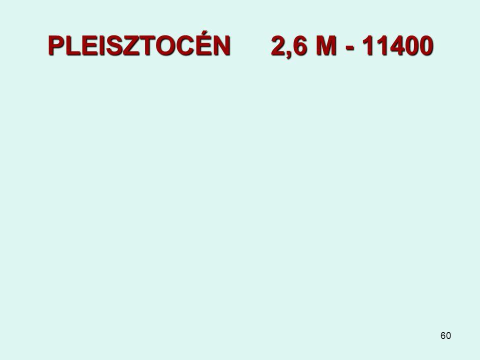 PLEISZTOCÉN 2,6 M - 11400