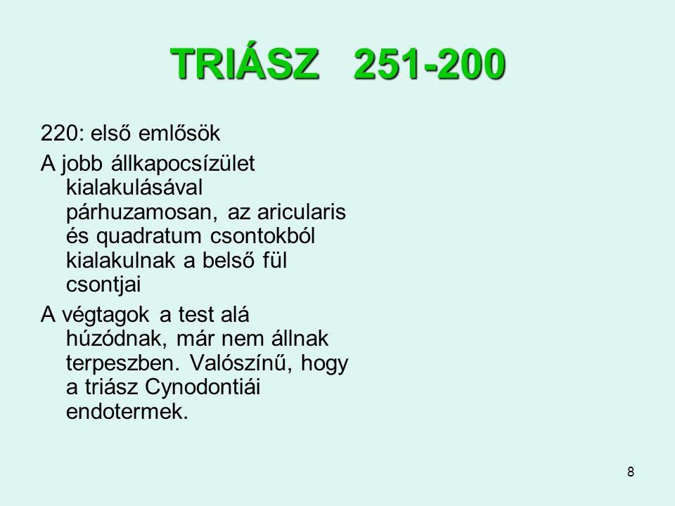 TRIÁSZ 251-200 220: első emlősök.