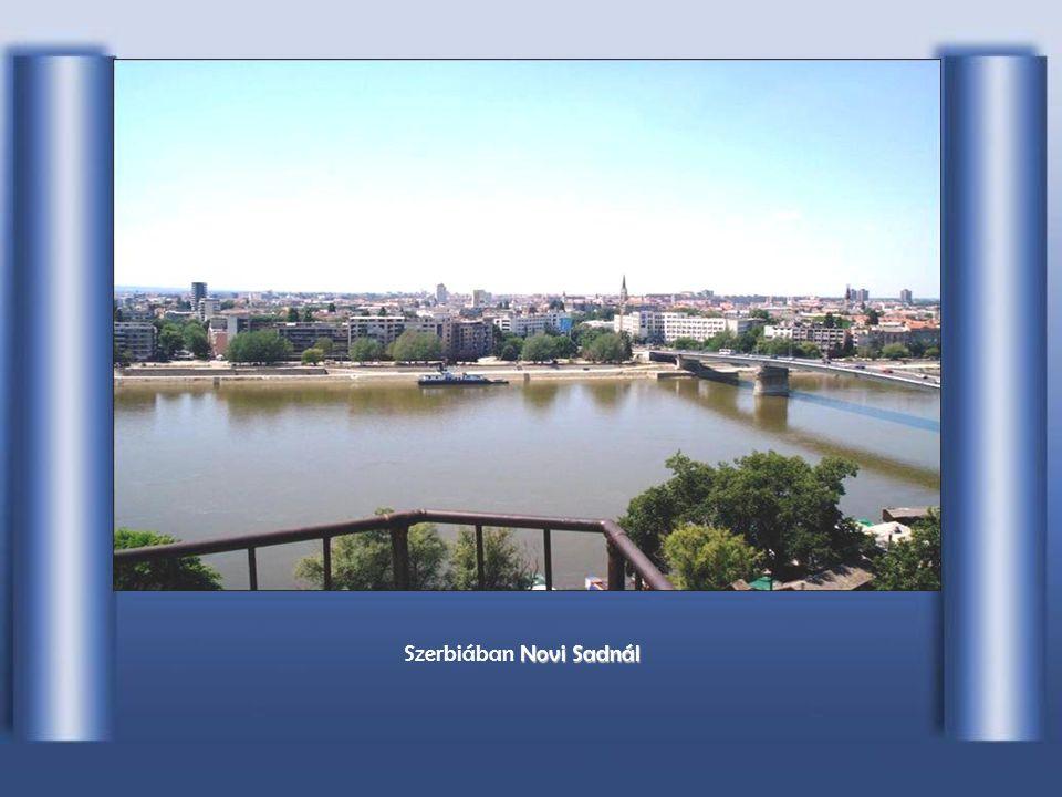 Szerbiában Novi Sadnál