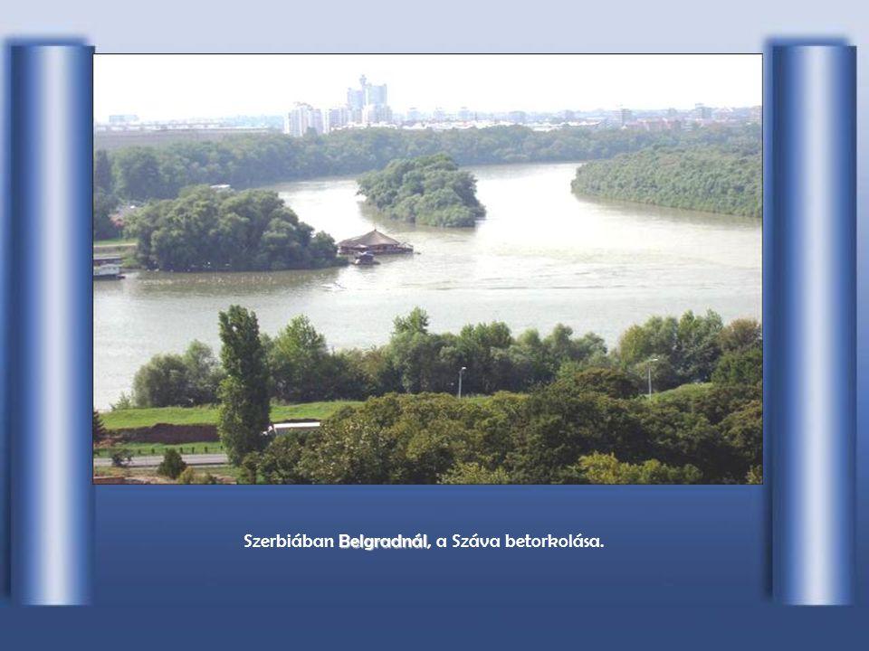 Szerbiában Belgradnál, a Száva betorkolása.