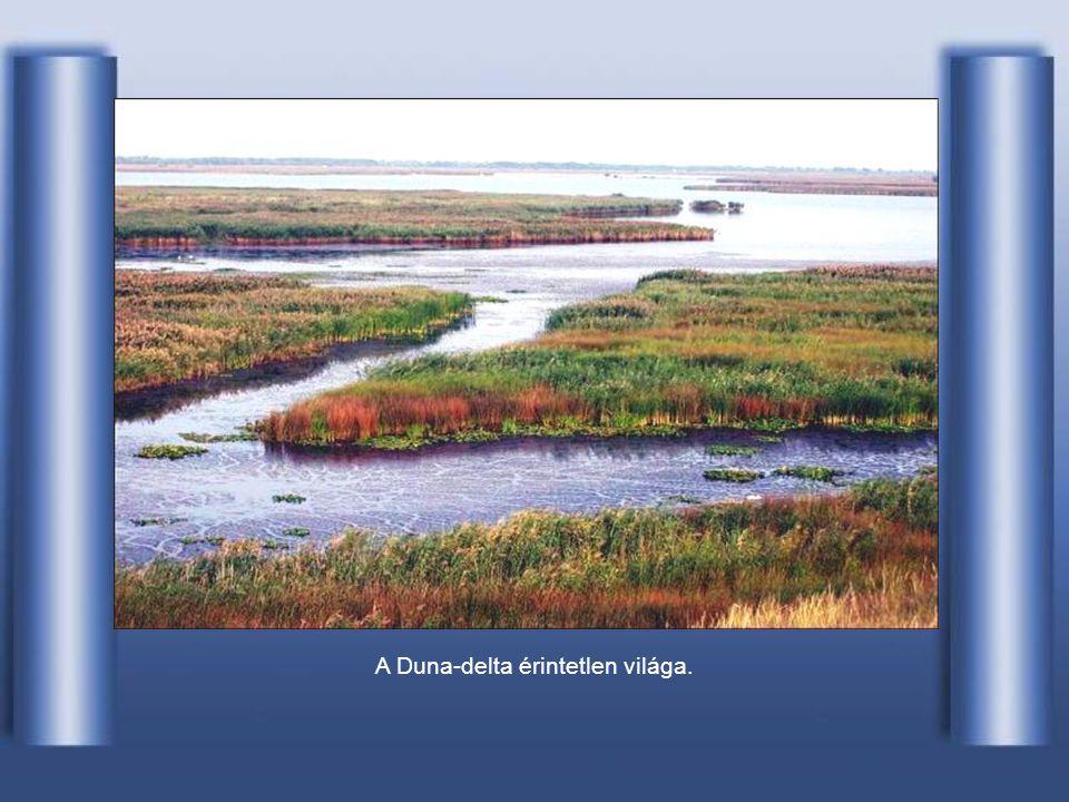 A Duna-delta érintetlen világa.