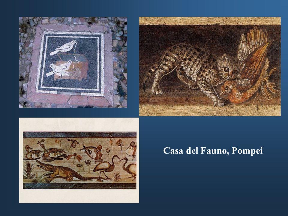 Casa del Fauno, Pompei