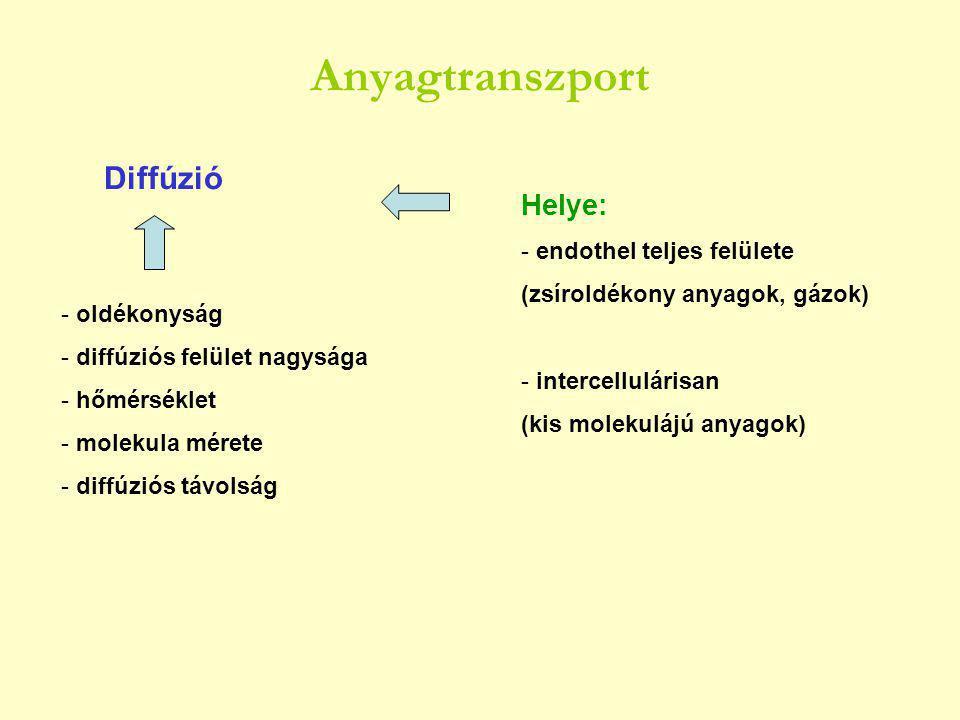 Anyagtranszport Diffúzió Helye: endothel teljes felülete