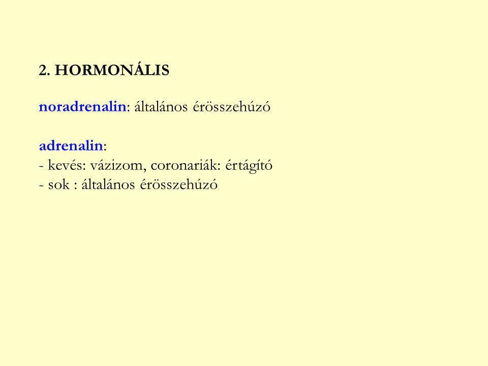 2. HORMONÁLIS noradrenalin: általános érösszehúzó. adrenalin: - kevés: vázizom, coronariák: értágító.