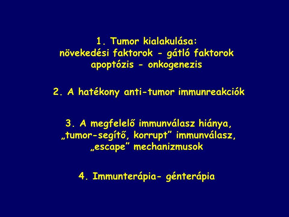 növekedési faktorok - gátló faktorok apoptózis - onkogenezis