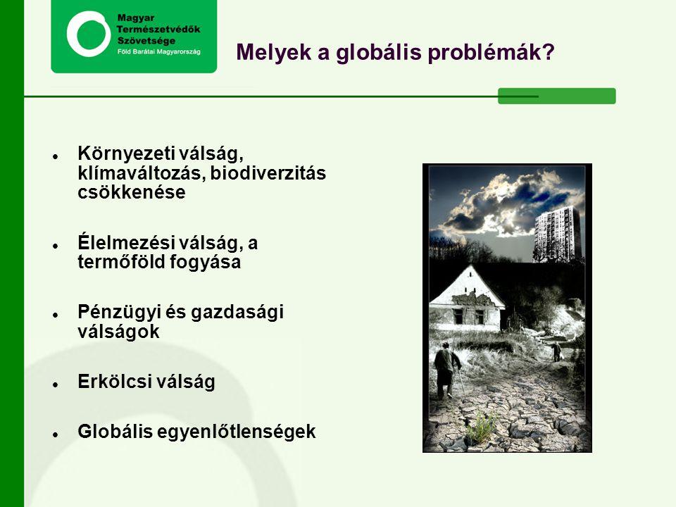 Melyek a globális problémák