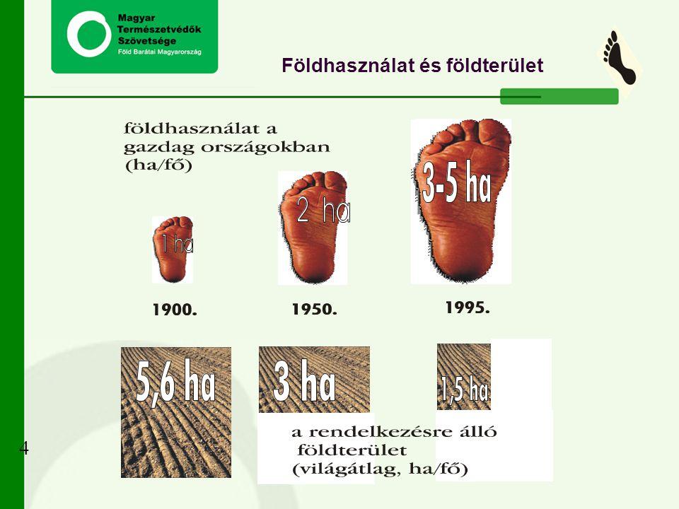 Földhasználat és földterület