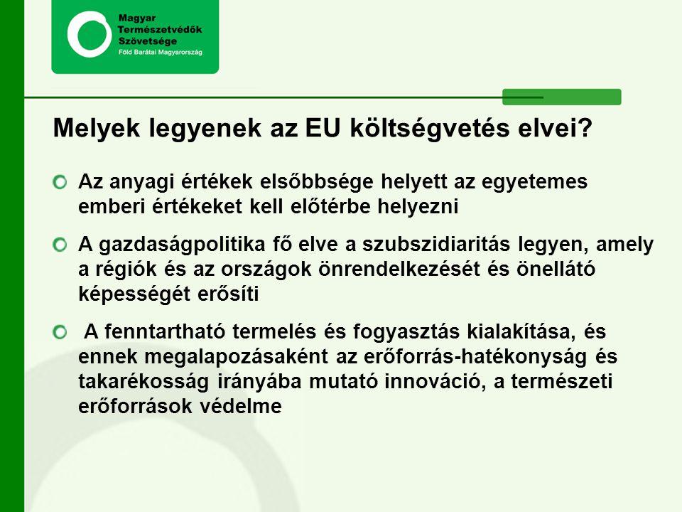 Melyek legyenek az EU költségvetés elvei