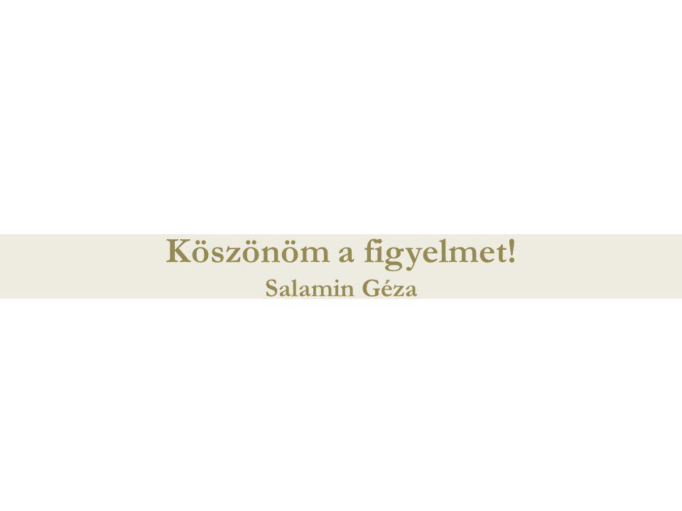 Köszönöm a figyelmet! Salamin Géza