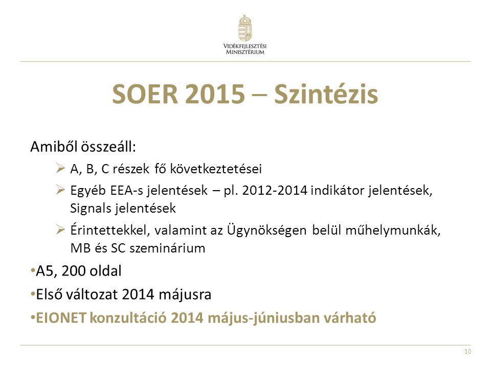 SOER 2015 – Szintézis Amiből összeáll: A5, 200 oldal