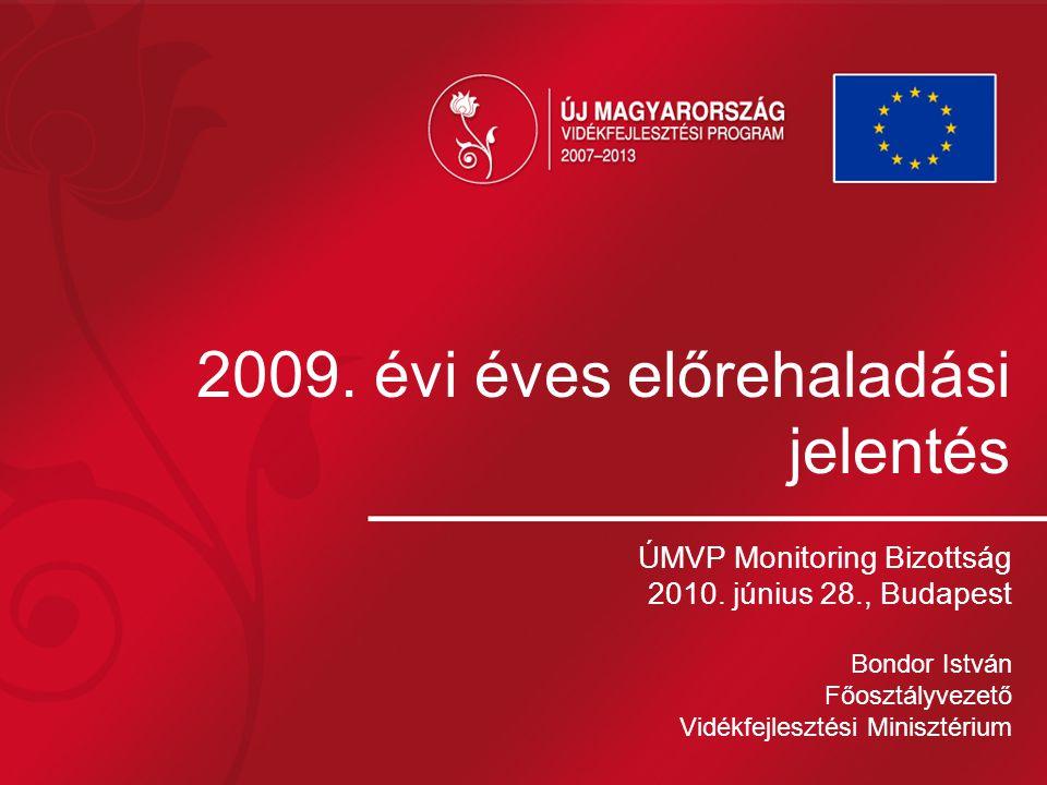 2009. évi éves előrehaladási jelentés