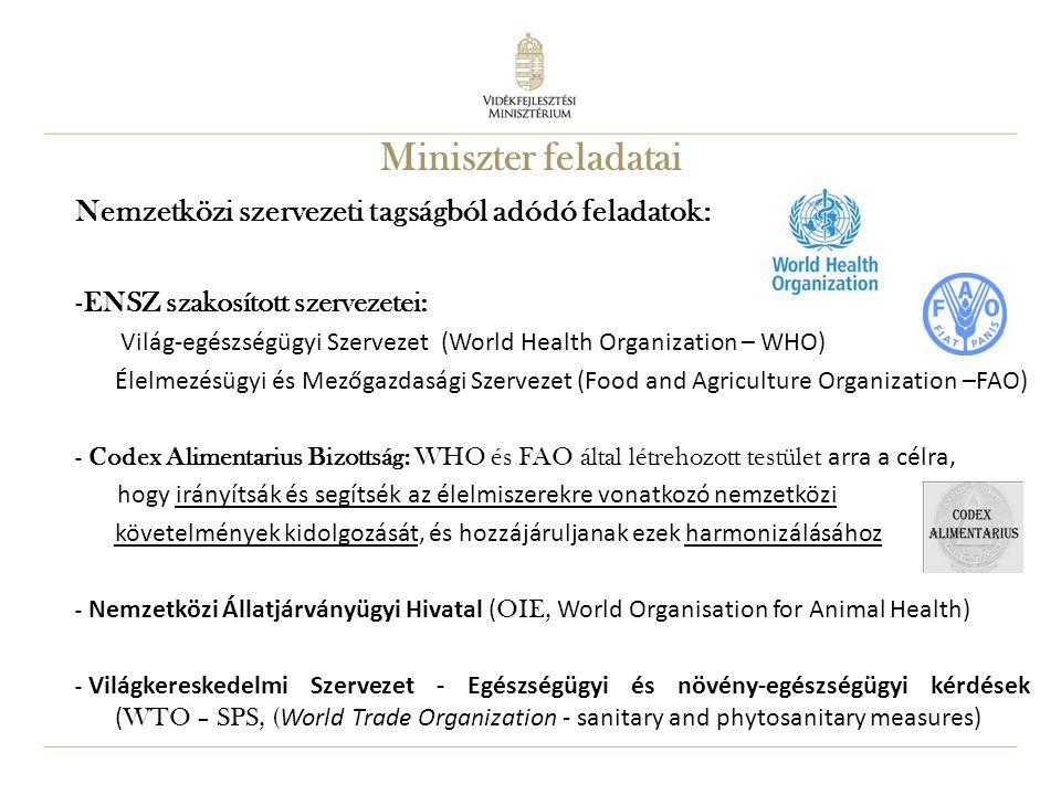 Miniszter feladatai Nemzetközi szervezeti tagságból adódó feladatok: