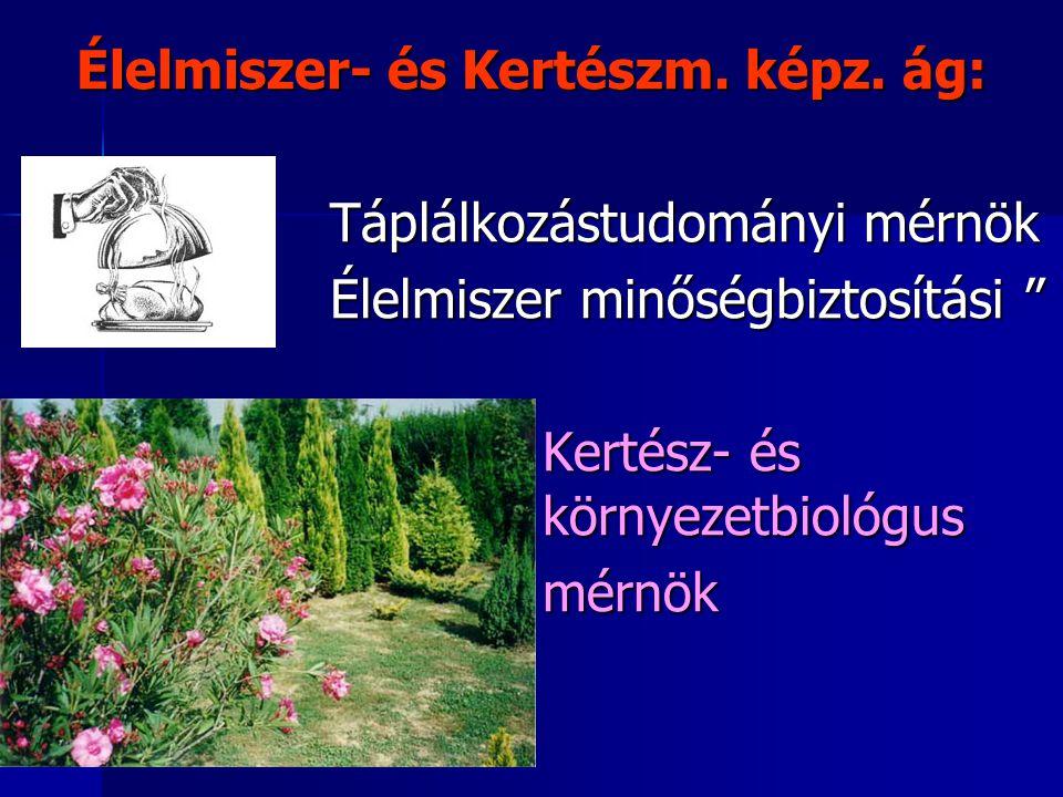 Élelmiszer- és Kertészm. képz. ág: