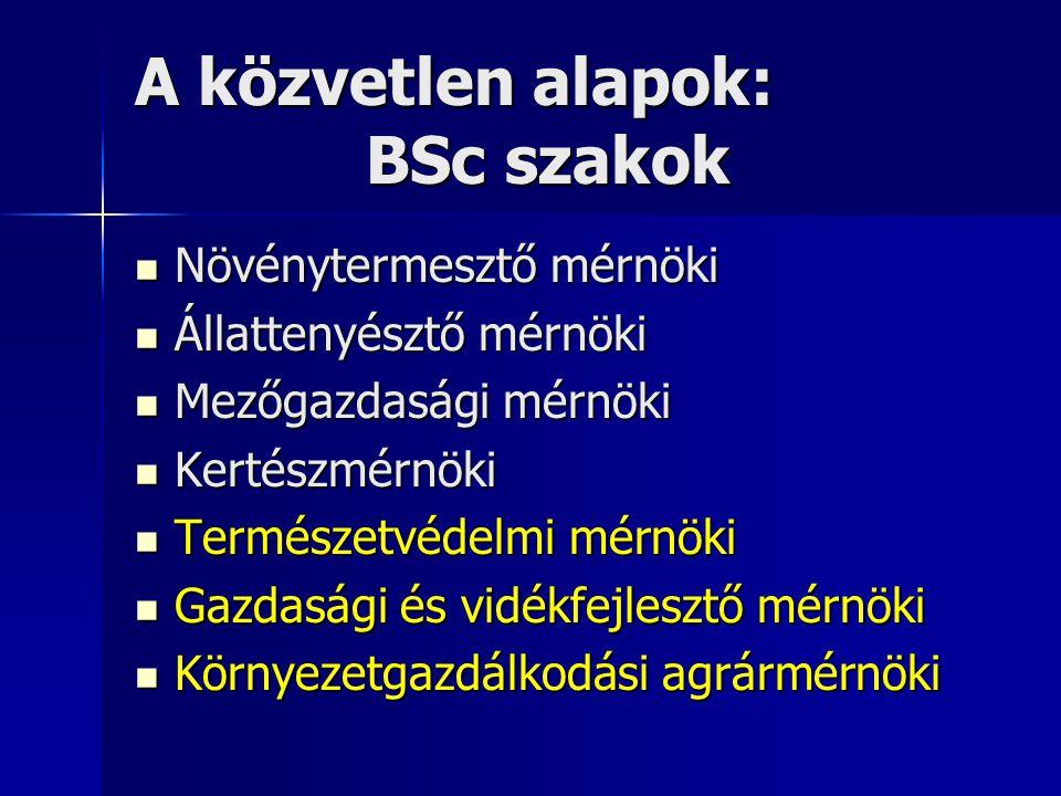 A közvetlen alapok: BSc szakok