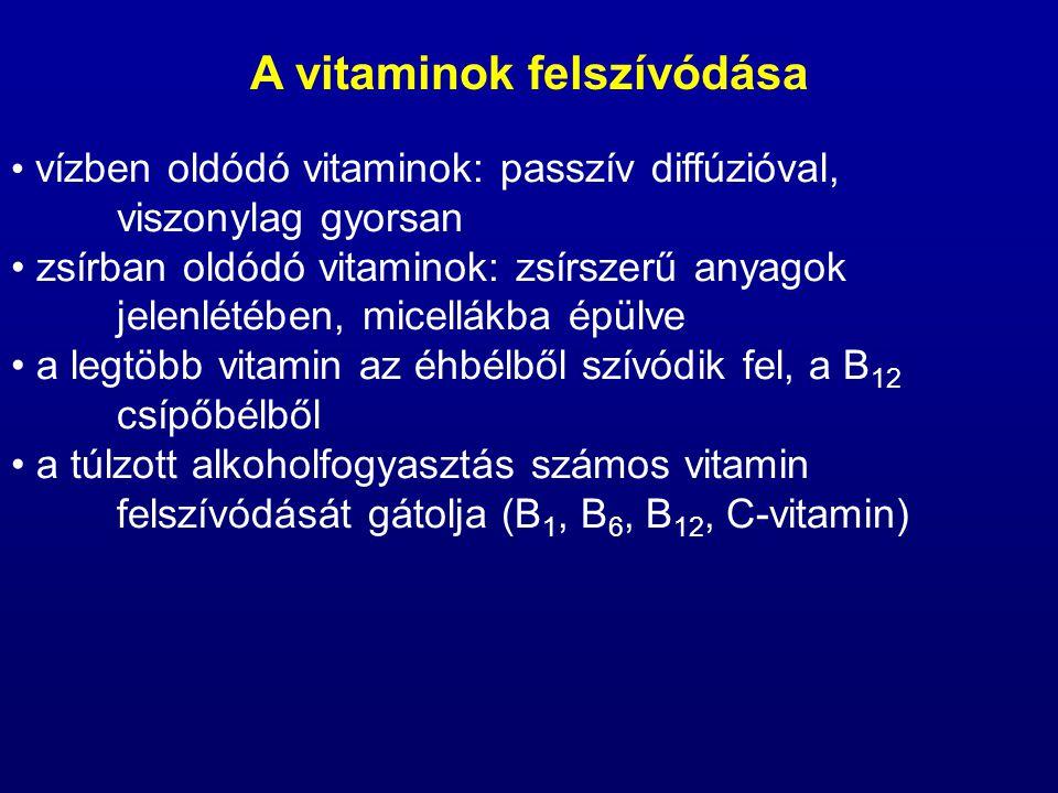 A vitaminok felszívódása