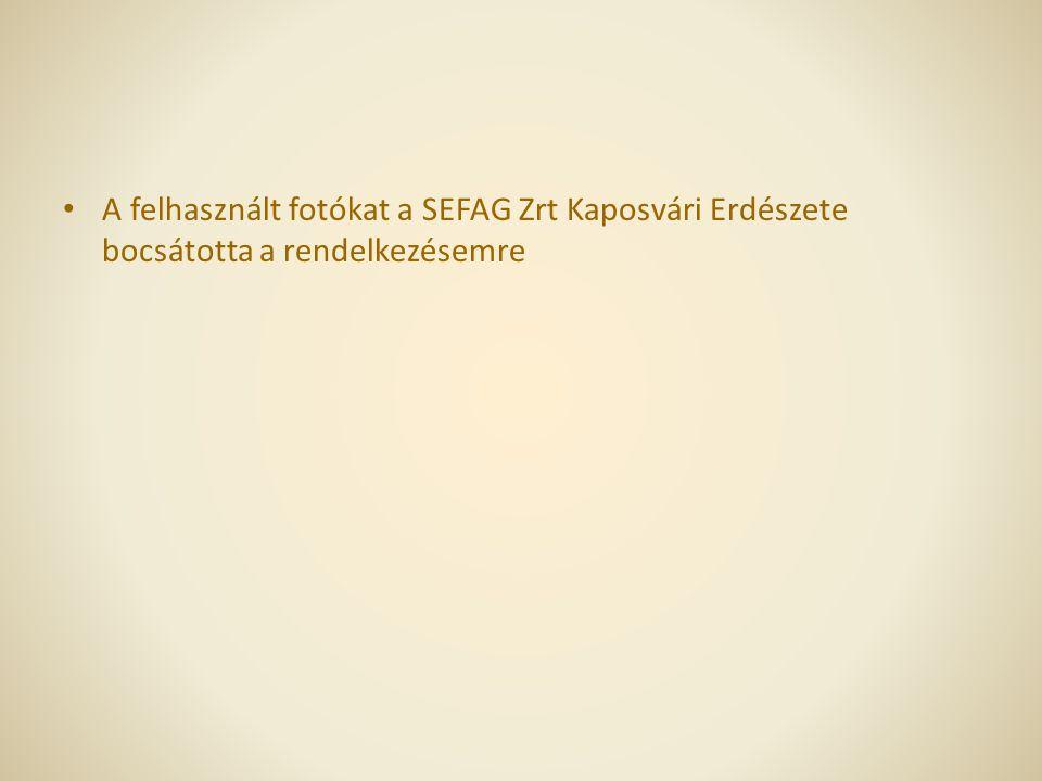 A felhasznált fotókat a SEFAG Zrt Kaposvári Erdészete bocsátotta a rendelkezésemre