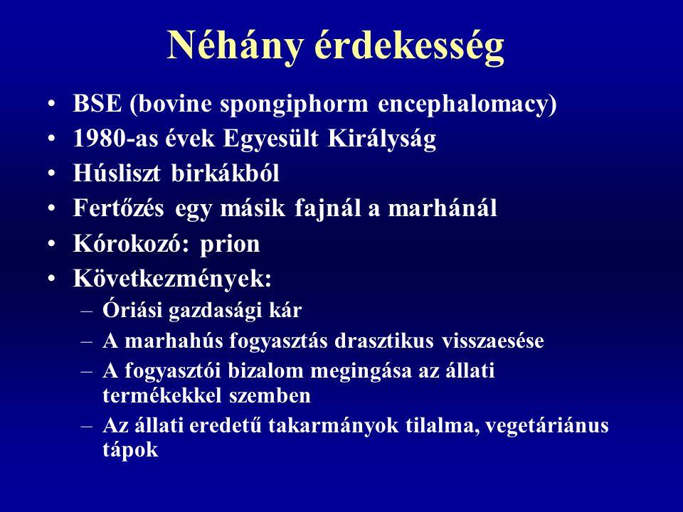 Néhány érdekesség BSE (bovine spongiphorm encephalomacy)