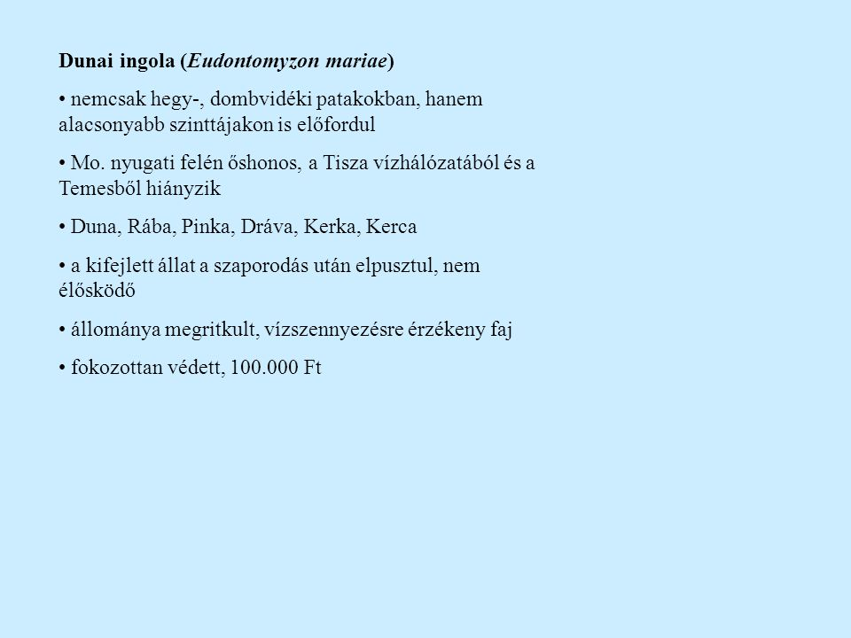 Dunai ingola (Eudontomyzon mariae)