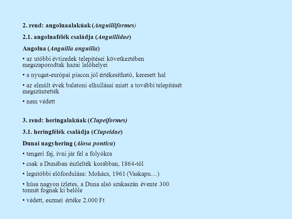 2. rend: angolnaalakúak (Anguilliformes)