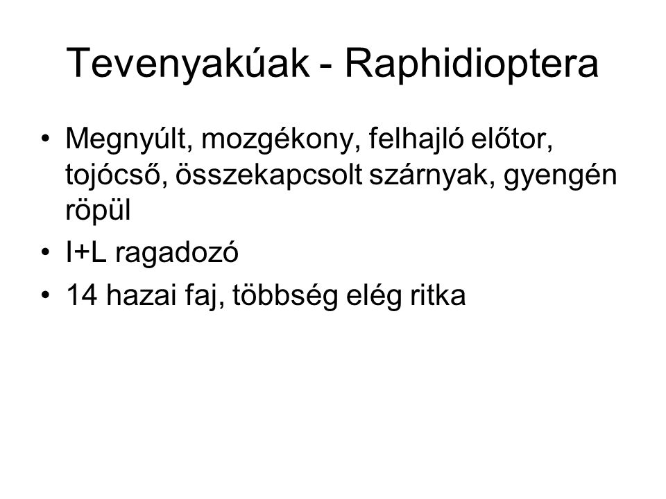Tevenyakúak - Raphidioptera
