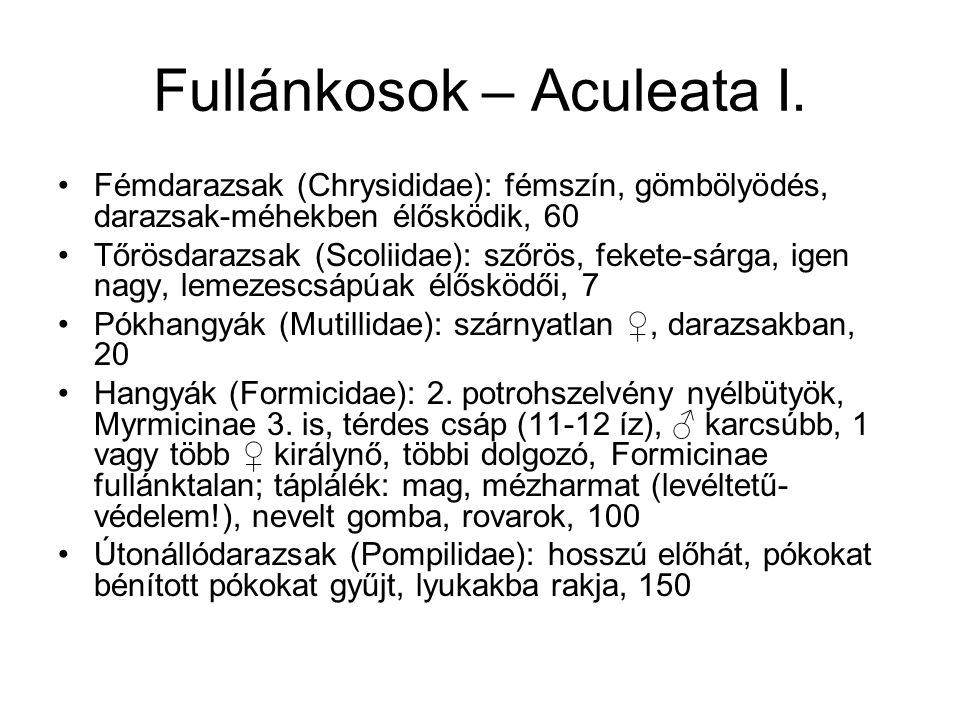 Fullánkosok – Aculeata I.