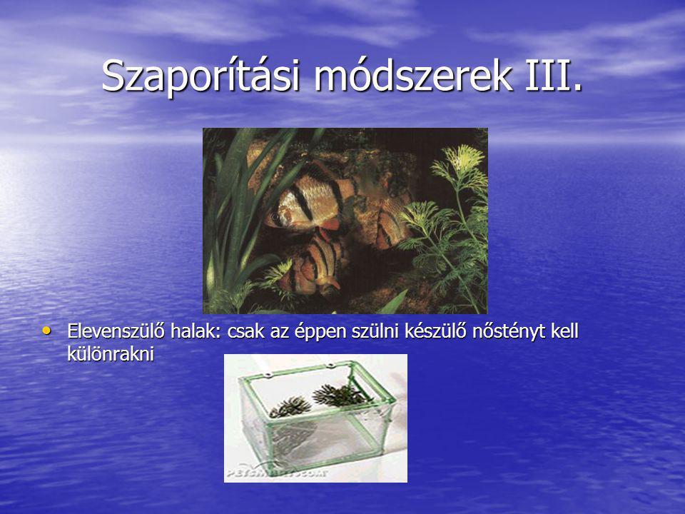 Szaporítási módszerek III.